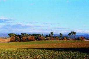 Un magnífic paratge natural del Bages. (Foto: ichn.iec.cat)