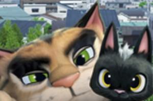 gats-pelicula