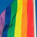 gay2014