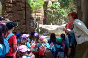 zoo-bcn-educacio